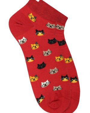 cat kitten socks australia