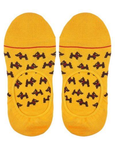 no show dogs socks australia